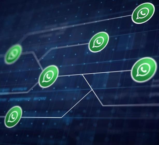 Red de comunicaciones de Whatsapp para negocios